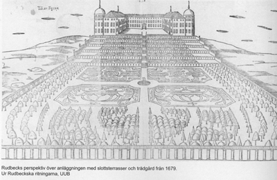 Hortus regius, the castle garden, 1679, as drawn by Olof Rudbeck the elder.