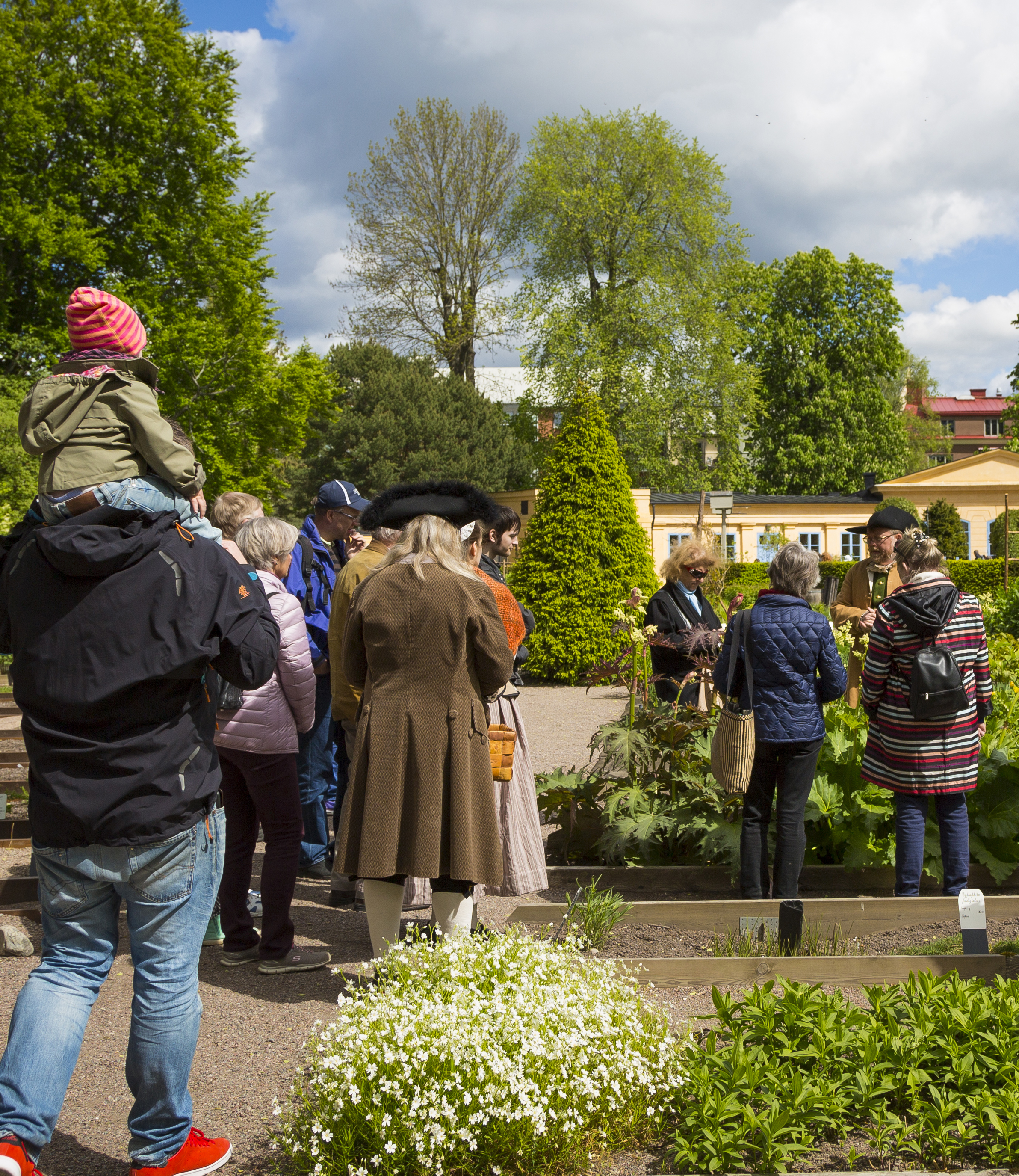 Guided Tour in the Linnaeus garden during the Linnaeus' Garden party.